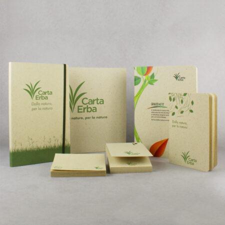 Articoli in carta erba